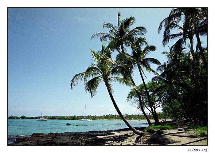 "фото ""Гавайская серия: Сиеста"" метки: путешествия, пейзаж, Северная Америка, лето"