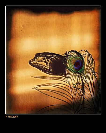 """фото """"Свет и тень."""" метки: абстракция, натюрморт,"""