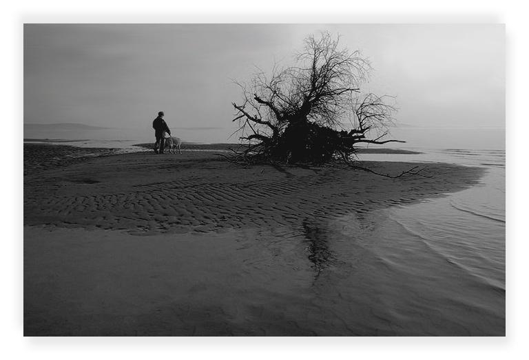"""фото """"Hallucinations #6"""" метки: жанр, пейзаж,"""