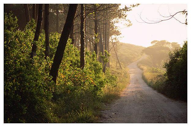 "фото ""The Way"" метки: пейзаж, путешествия, Европа"