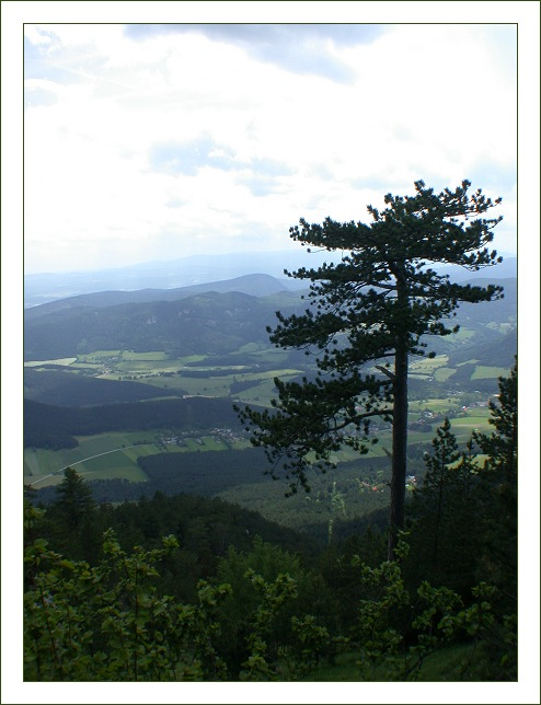 "photo ""1.3 km"" tags: landscape, mountains, summer"