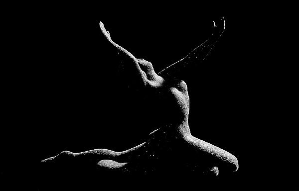 """фото """"Ballet"""" метки: макро и крупный план,"""