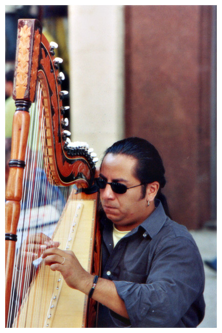"photo ""The Harp Player"" tags: reporting,"