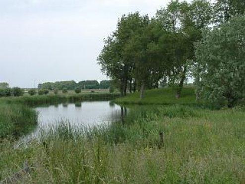 "фото ""Landscape at Spaarndam"" метки: природа,"