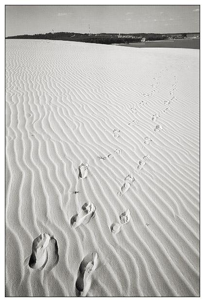 "фото ""Footprint in the sand"" метки: пейзаж, лето"
