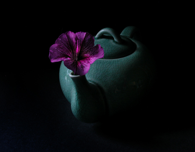 "photo ""Tea Pot Still Life"" tags: misc.,"