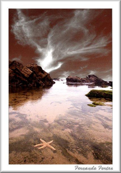 "фото ""Starsea"" метки: пейзаж, вода"