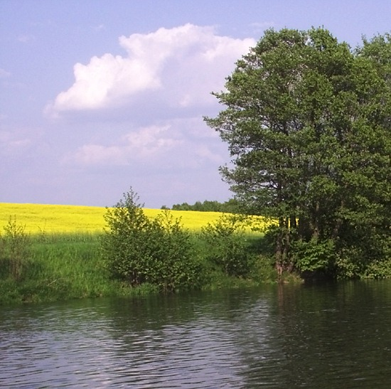 """photo """"Yellow and green"""" tags: landscape, travel, Europe, summer"""