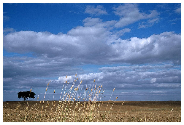 "photo ""Vast and Wide"" tags: landscape, summer"