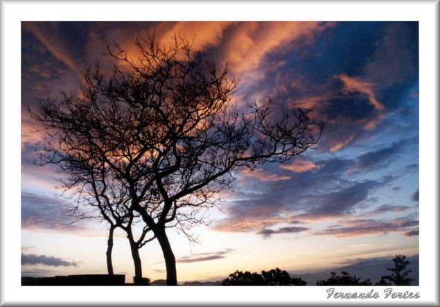 "фото ""Dreamland"" метки: пейзаж, закат"