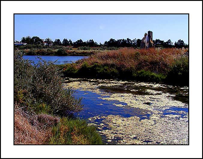 "фото ""Country Flavour"" метки: пейзаж, вода"