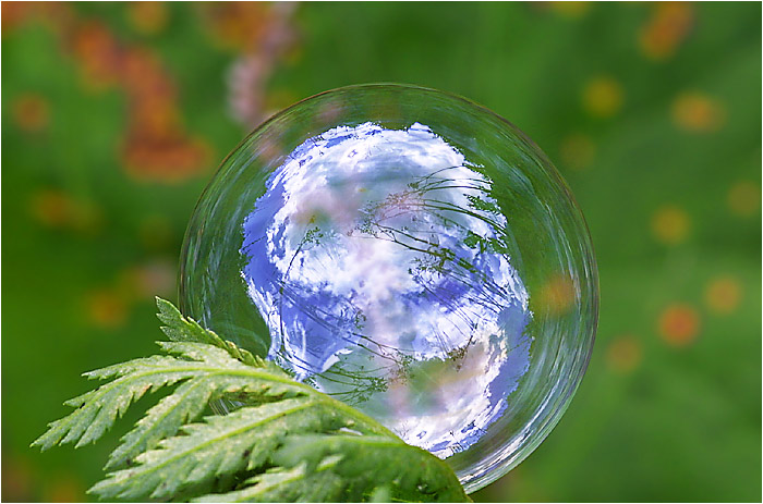 "photo ""Soap Bubble"" tags: misc.,"