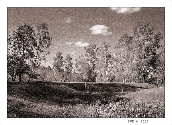"""photo """"Landscape 1"""" tags: landscape, summer"""