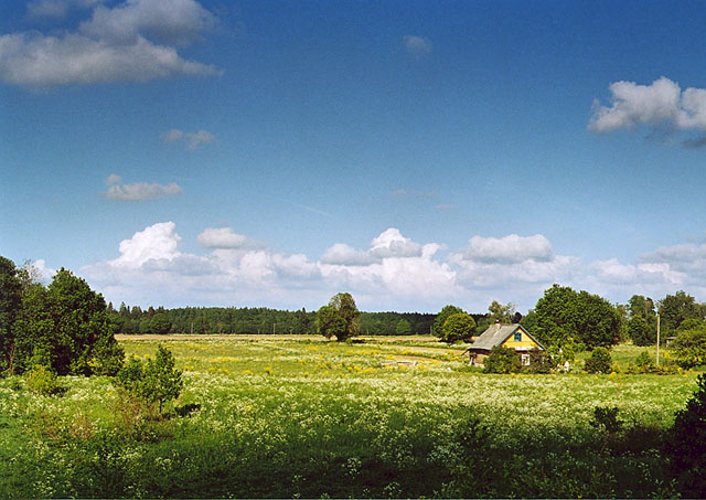 "photo ""Landscape in environs of Kingisep"" tags: landscape, summer"