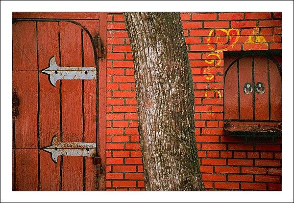 """фото """"Дерево и декорация"""" метки: разное, архитектура, пейзаж,"""