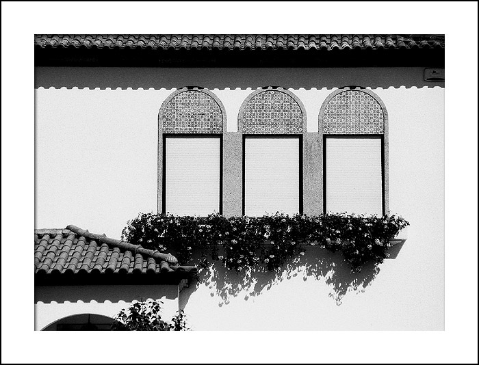"photo ""Windows"" tags: architecture, landscape,"