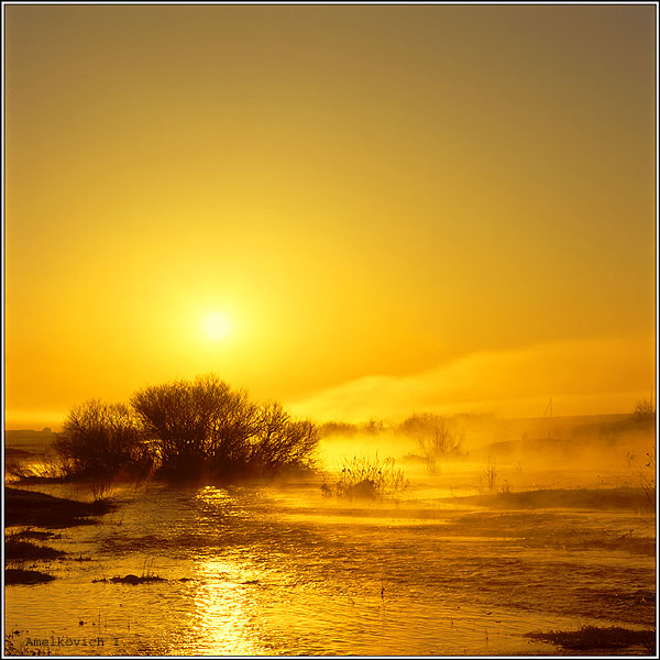 "фото ""100 % GOLD."" метки: пейзаж, вода, закат"