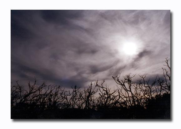 "photo ""FEAR GOD"" tags: landscape, nature,"