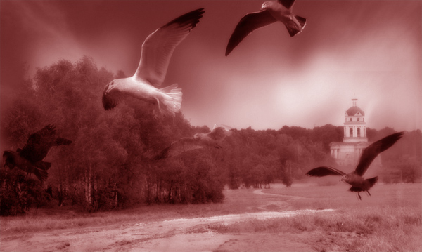"photo ""The Flight"" tags: misc.,"