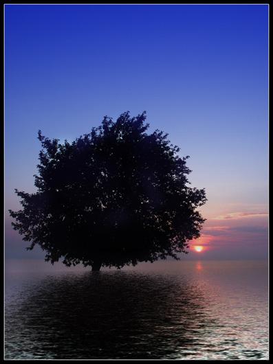 """фото """"Рассветная-XIV"""" метки: пейзаж, вода, закат"""