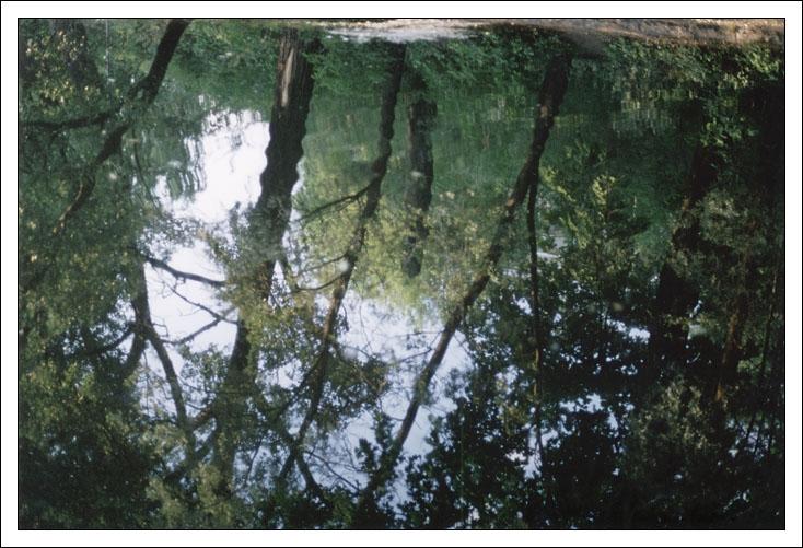 "фото ""Зеркало 2"" метки: пейзаж, абстракция, вода"
