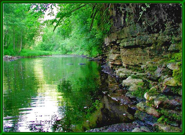 "фото ""Green river"" метки: пейзаж, вода, лето"