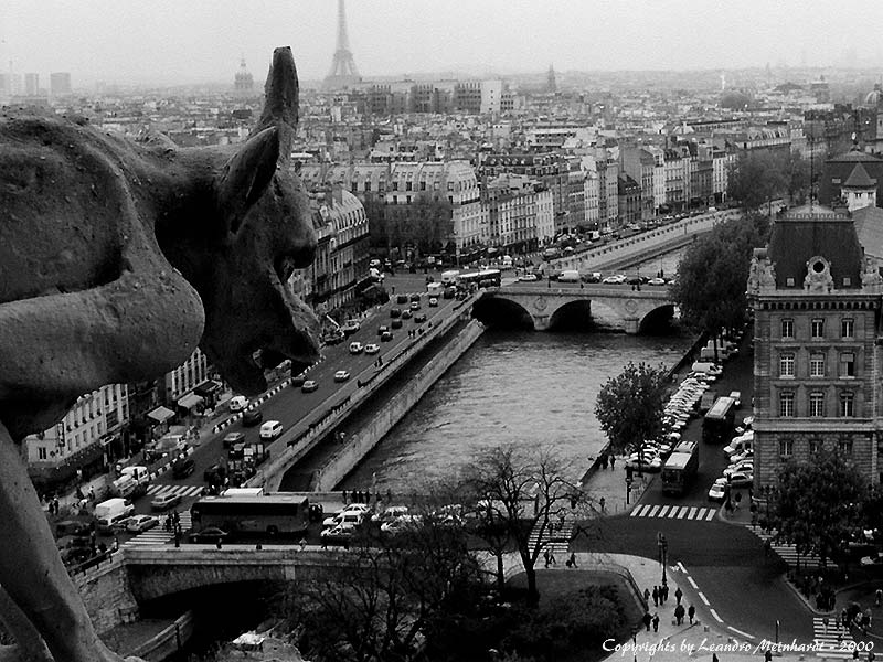 "photo ""Gargoyles Over Paris"" tags: travel, architecture, landscape, Europe"
