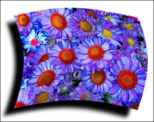"фото ""Digital Flowers"" метки: фотомонтаж, природа, цветы"