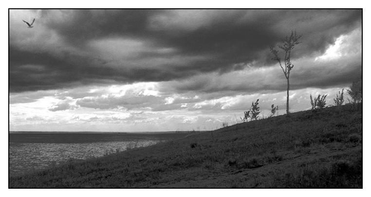 """фото """"Hallucinations """"Перед бурей"""""""" метки: природа, фотомонтаж,"""