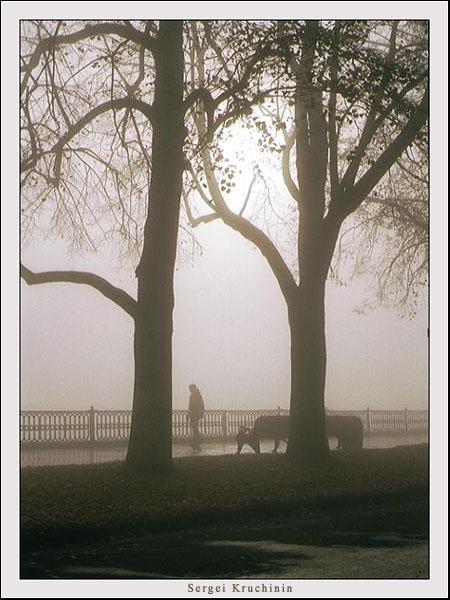 """фото """"Утро туманное"""" метки: пейзаж, природа, осень"""