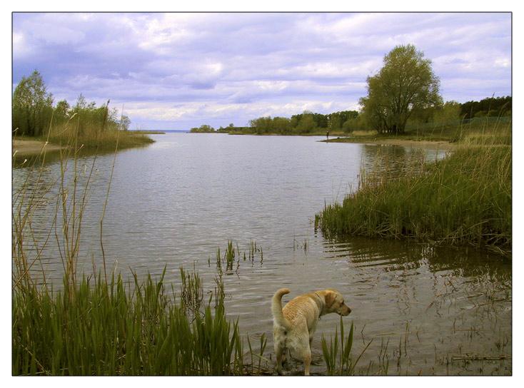 """фото """"...#6"""" метки: пейзаж, вода, закат"""