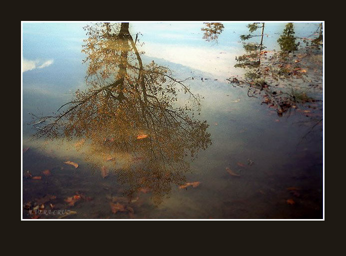 "photo ""Autumn Color Reflection"" tags: landscape, autumn"