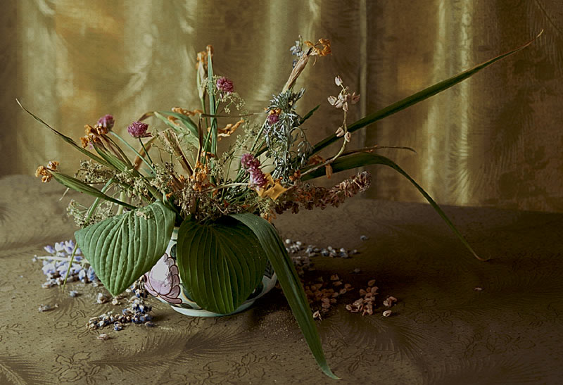 "photo ""Old bouquet"" tags: still life,"