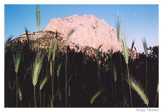 "photo ""Mountain ""Falcon""."" tags: landscape, mountains"