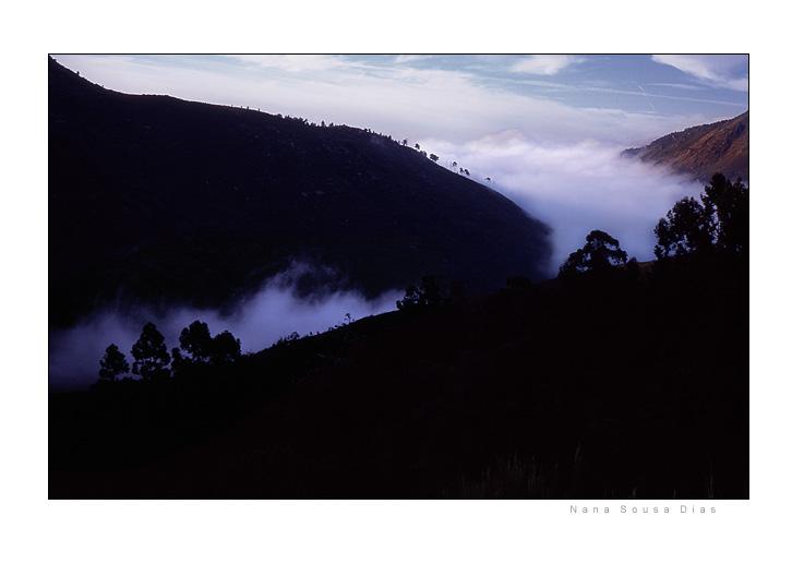 """фото """"Soft morning"""" метки: пейзаж, лето"""