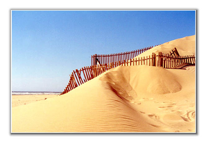 "photo ""call me sand"" tags: misc.,"