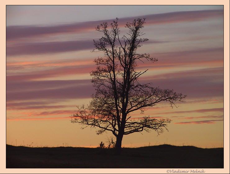 """фото """"Цвета доброго вечера...."""" метки: пейзаж, закат, ночь"""