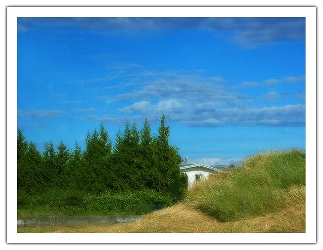 """photo """"Breeze"""" tags: landscape, summer"""
