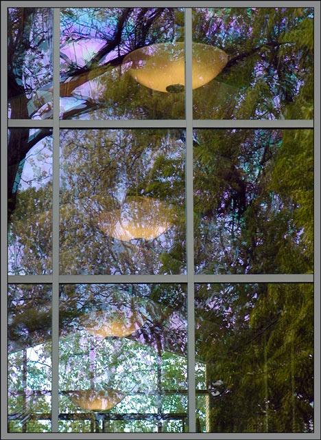 "фото ""flexing reflex"" метки: абстракция, разное,"
