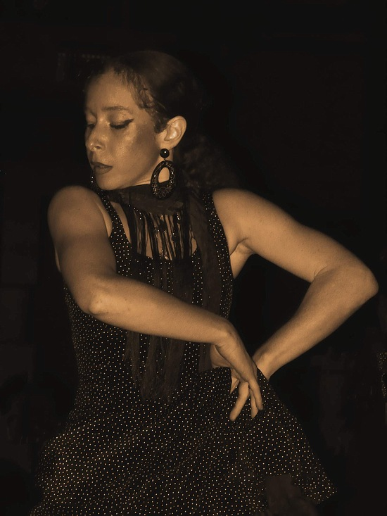 "photo ""Flamenco"" tags: misc.,"