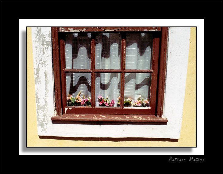"photo ""windows 3.1"" tags: misc.,"