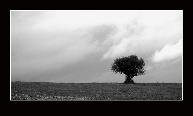 "photo ""Alone II"" tags: landscape, clouds, winter"