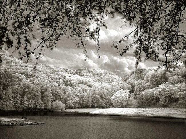 """фото """"Solitude"""" метки: пейзаж, горы, лес"""