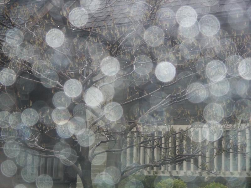 """фото """"Дождь"""" метки: разное,"""