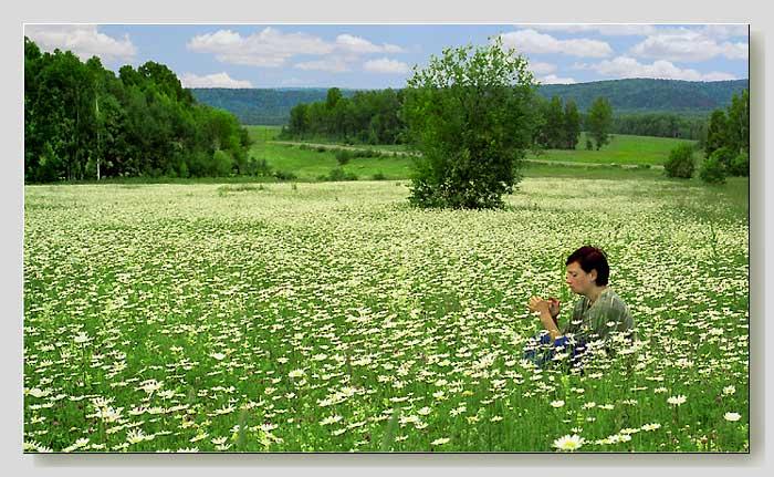 """фото """"Любит..., не любит..."""" метки: пейзаж, жанр, лес"""