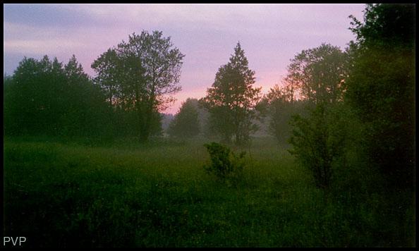 "фото ""Закат"" метки: пейзаж, закат, лето"