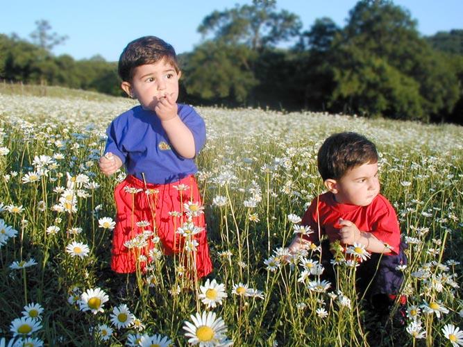 "photo ""Luka & Saba"" tags: portrait, landscape, children, summer"