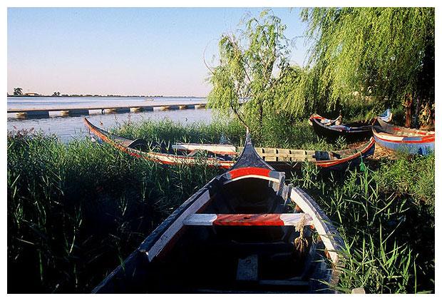 "фото ""Old Boats Club"" метки: пейзаж, вода"