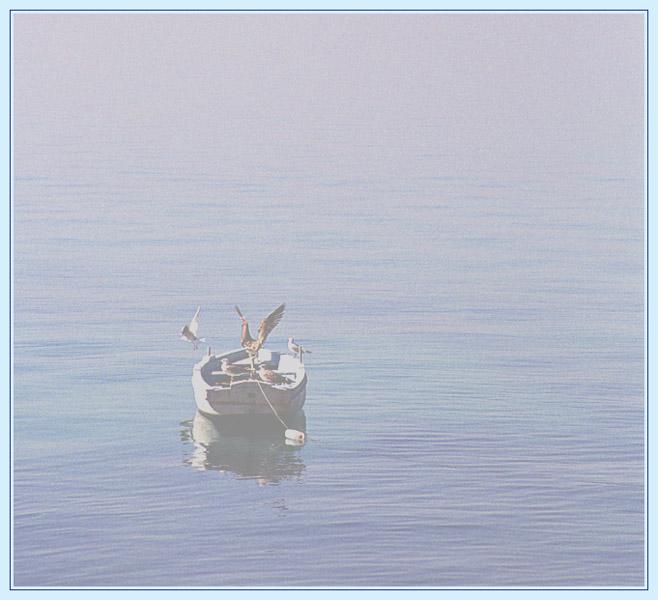 """фото """"Сквозь утренний туман"""" метки: пейзаж, природа, вода, дикие животные"""