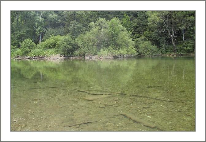 """фото """"Green Lake"""" метки: пейзаж, вода, лето"""